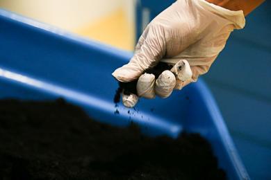 Uwaga na nieuczciwe praktyki sprzedawców węgla