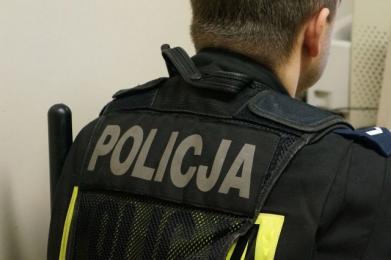 Policjanci przejęli marihuanę na Reggae Festiwalu