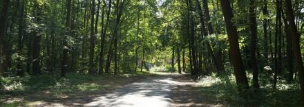 Remont dróg w ramach Funduszu Dróg Samorządowych